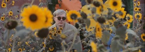 William John Kennedy, Warhol Flowers III