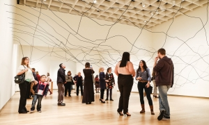 Donate to OMA | Orlando Museum of Art