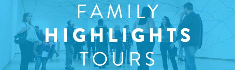 Family Highlights Tours
