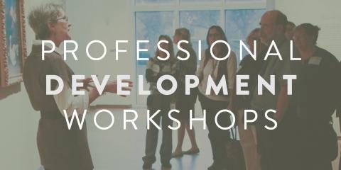 Pro dev workshops